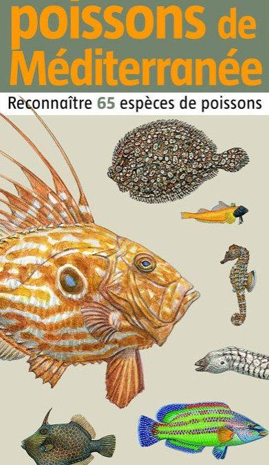 petit atlas des poissons de méditerranée Livre